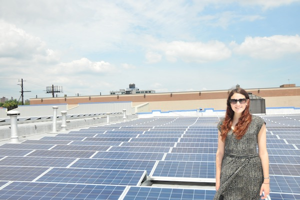 South Bronx Solar Garden Image 5